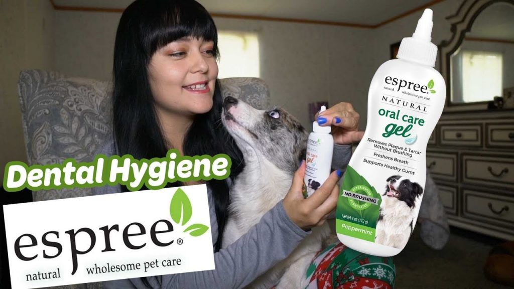 Espree Oral Care Gel   Dental Care for Dogs & Cats