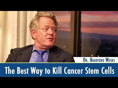 How to Kill Cancer Stem Cells – Dr. Bradford Weeks